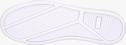 Šedé pánske kožené topánky GAZE